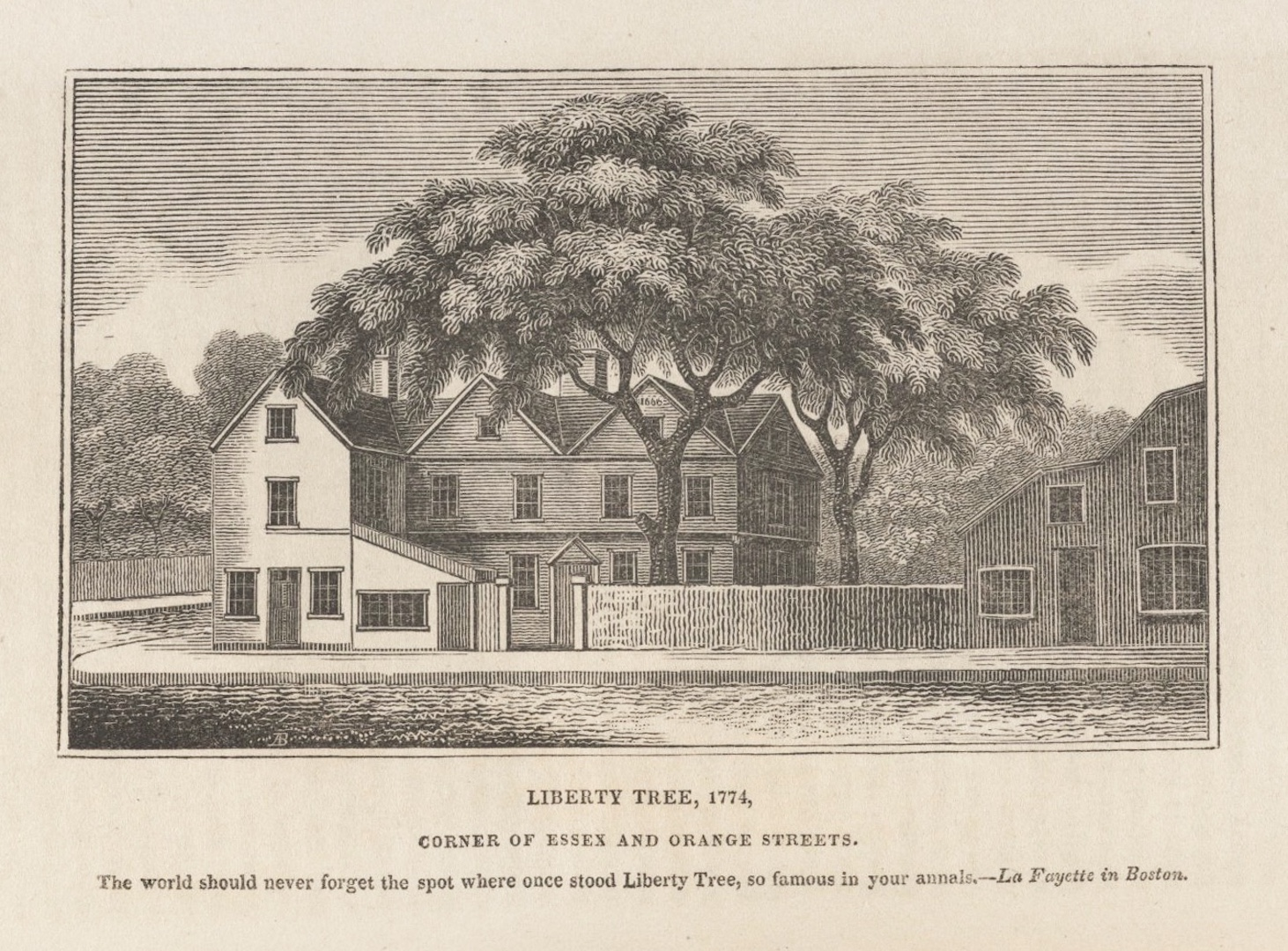 Remembering Charleston's Liberty Tree, Part 1