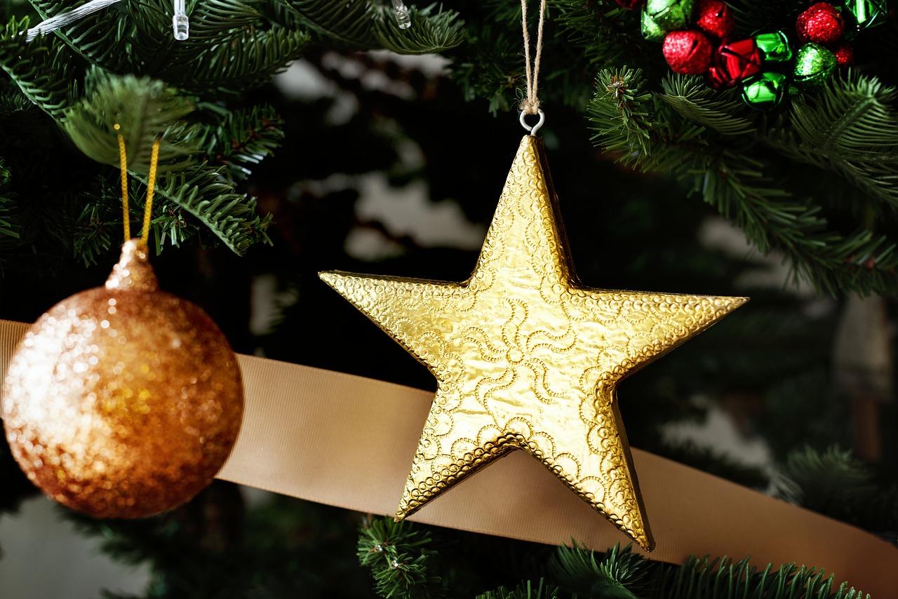 Holiday ornaments winter Christmas