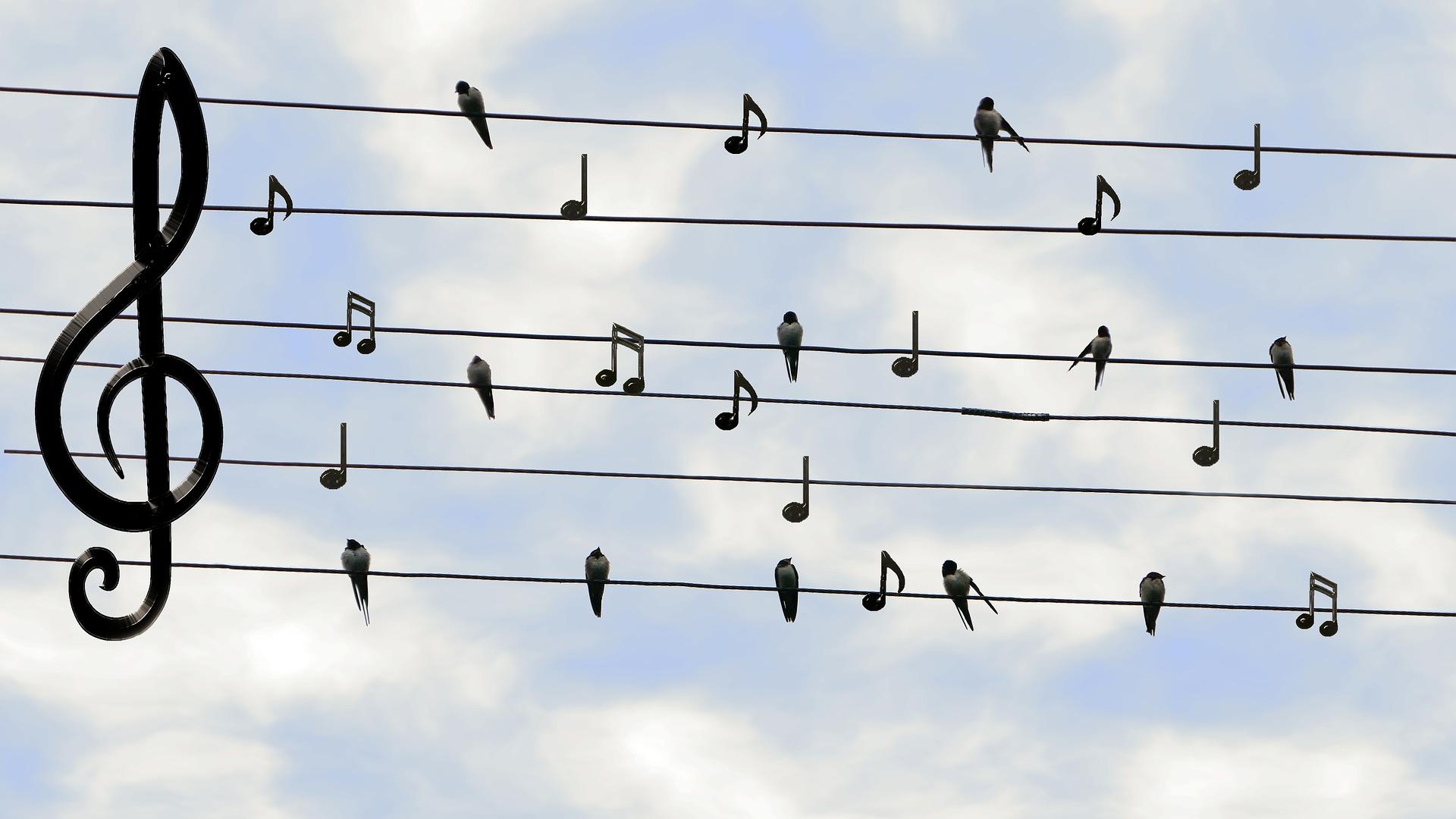 Music scramble