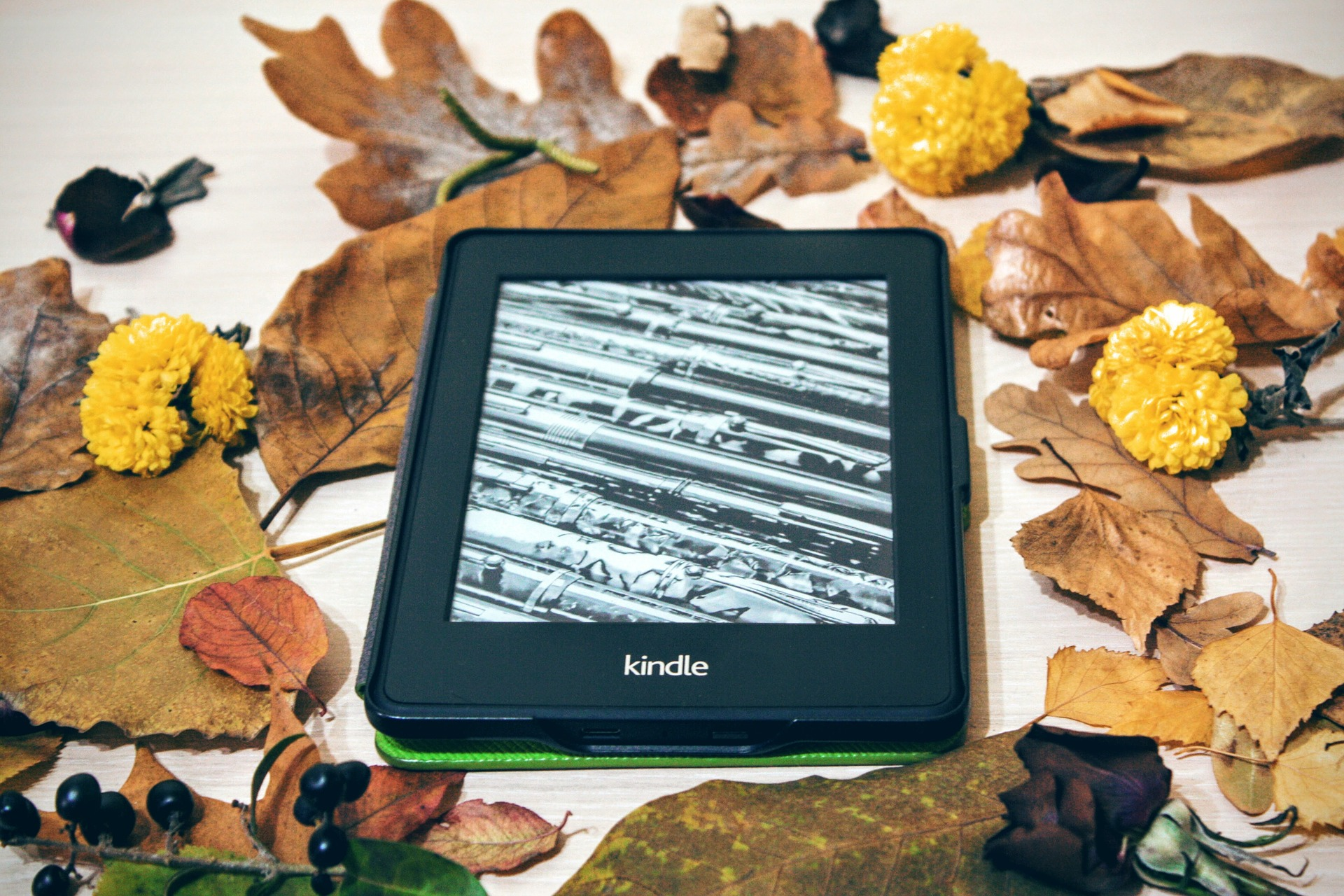 Thanksgiving themed digital reads to keep you entertained in those