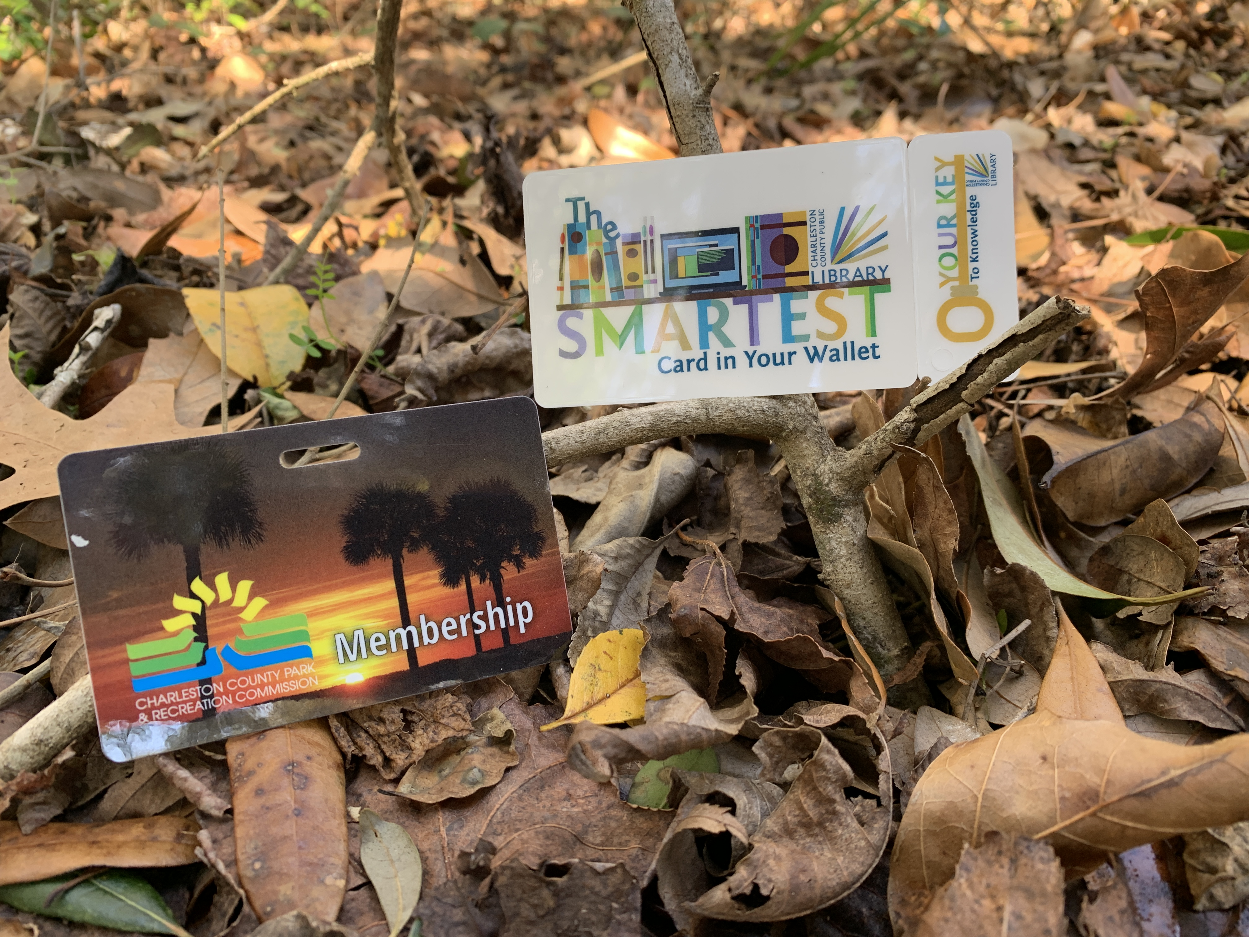 Charleston County Parks, CCPL to offer Gold Pass check out program