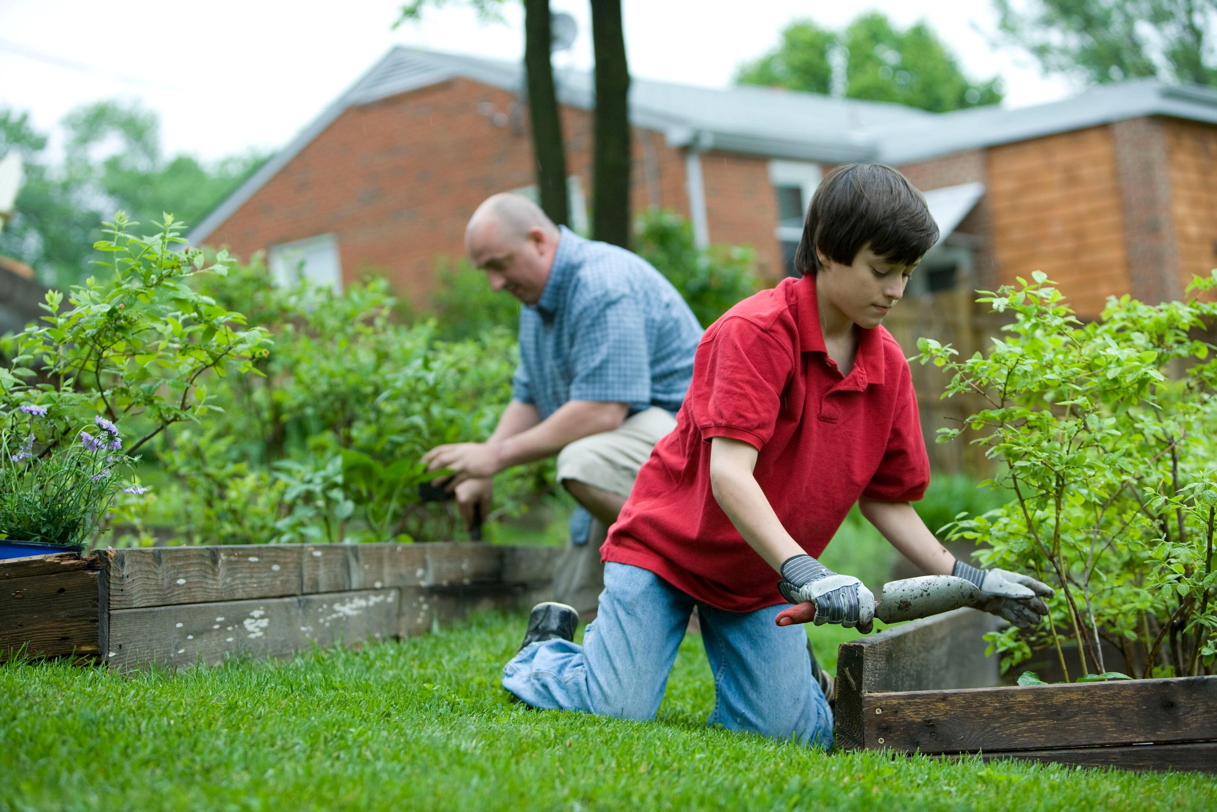 Virtual Gardening Series