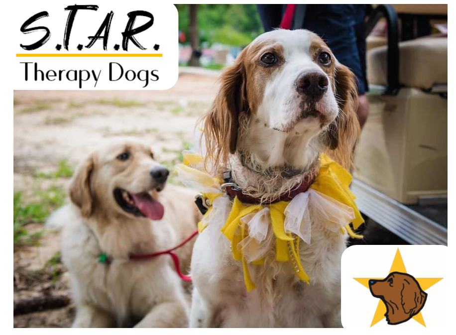 Star Therapy Dogs Reading Program