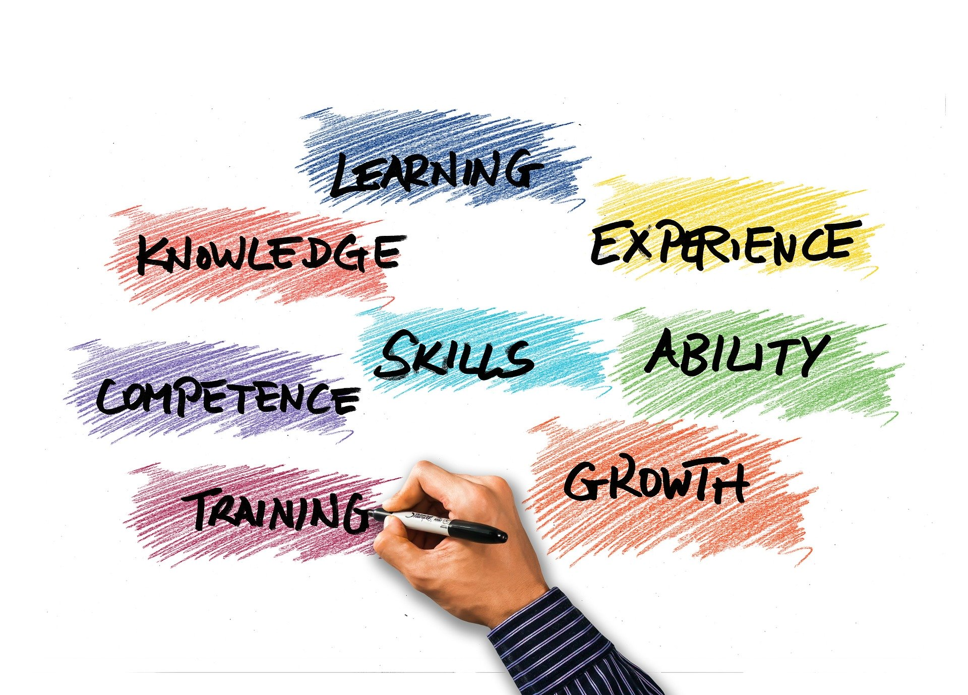 What are Soft Skills and are they necessary for success?